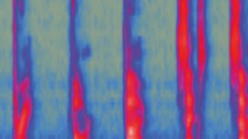 Captura espectrograma